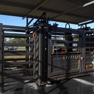 Pneumatic Cattle Equipment