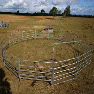 11 Panel Horse Round Yard